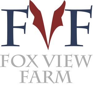 foxview logo